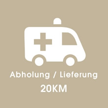 DaveDoctorDing - Abholung / Lieferung 20 km