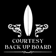 DaveDoctorDing - Courtesy Back up board at no cost